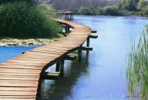 תמונה של גשר | תמונות