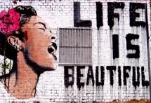 תמונה של Life is beautyful | תמונות