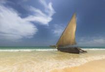 תמונה של חופי זנזיבר | תמונות