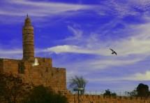 תמונה של מגדל דוד | תמונות