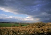 תמונה של העמק הוא חלום | תמונות
