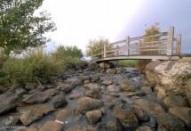 תמונה של גשר קטן | תמונות