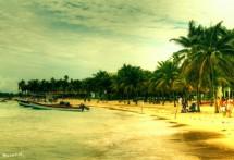 תמונה של חוף מקסיקני   תמונות