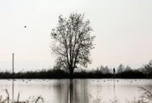 תמונה של אדם בטבע | תמונות