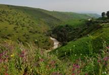 תמונה של הירדן ההררי | תמונות