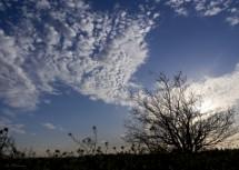 תמונה של ציור בשמיים | תמונות