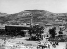 תמונה של סבסטיה 1943   תמונות