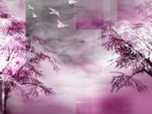 תמונה של mist | תמונות