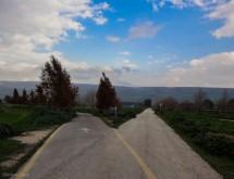 תמונה של The road not taken | תמונות