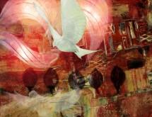 תמונה של שקשוק הכנף   תמונות