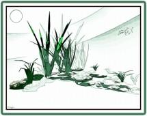 תמונה של Simply greenish | תמונות