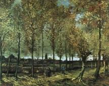 תמונה של Van Gogh 047   תמונות