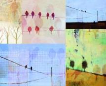 תמונה של ציפורים | תמונות