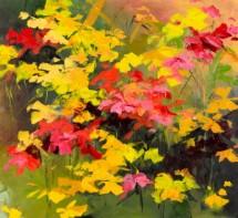 תמונה של יופי צבעוני   תמונות