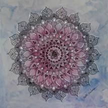 תמונה של פרח שמיים   תמונות
