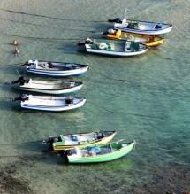 תמונה של תהיה לי סירה קטנטנה | תמונות
