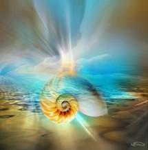 תמונה של 1 universe | תמונות