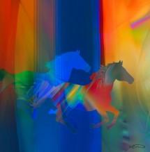תמונה של סוסים | תמונות
