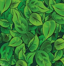 תמונה של עלים ירוקים צד ימין | תמונות