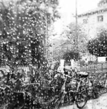 תמונה של גשם | תמונות