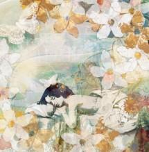 תמונה של חלום פרחוני בלבן | תמונות