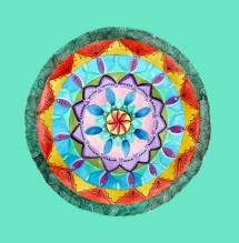 תמונה של פרח   תמונות