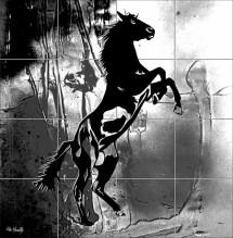 תמונה של סוס הדפס | תמונות