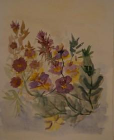 פרחים בסגול