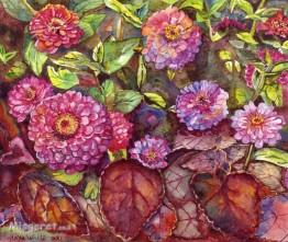 פרחי ציניות