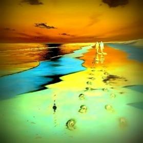 על החוף