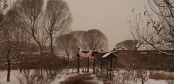 שלג חום ובלונים