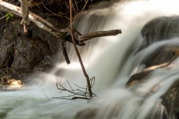 עוצמת המים