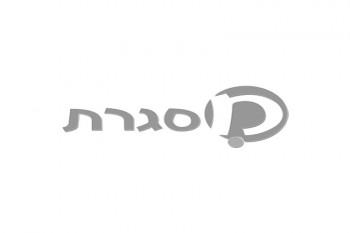 עגורים בערפל