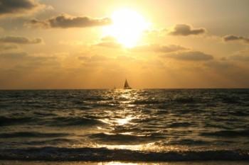 ים של נוף