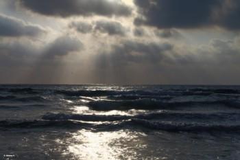 אור המים