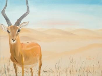 אייל במדבר