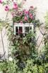 חלון עם פרחים #2