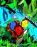 תמונה של עץ הזית | תמונות