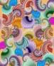 תמונה של שבלולים   תמונות