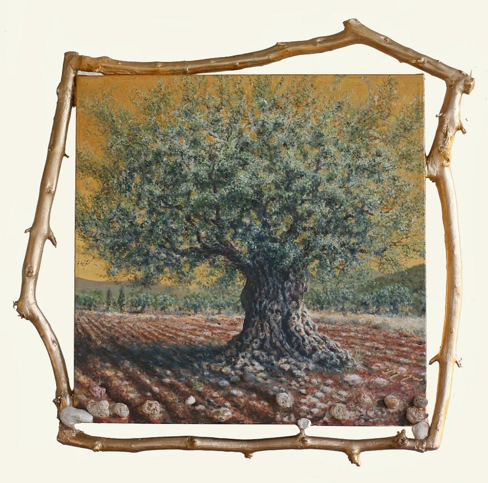 ענף עץ הזית