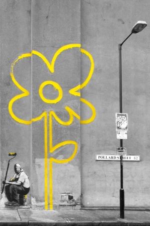 Yellow Street flower