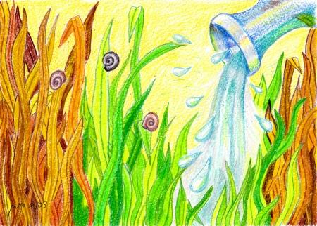 הדשא ירוק יותר
