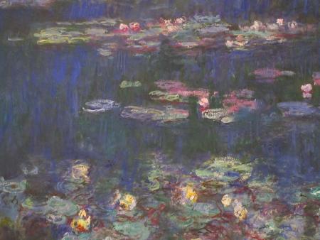water lilies חבצלות מים