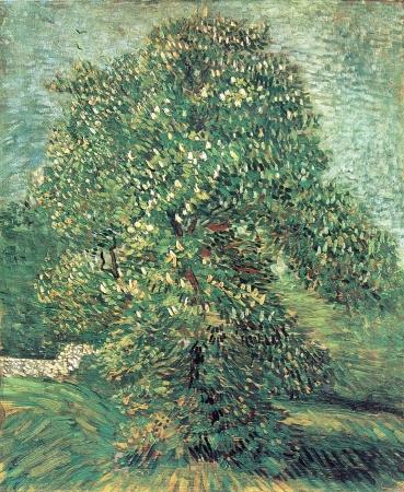 Van Gogh 149