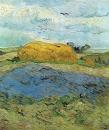 Van Gogh 180