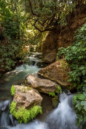 נופים וטבע