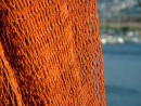 רשת דייגים
