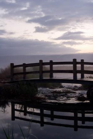 גשר צר מאוד