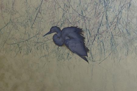 ציפור כחולה