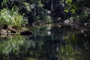 מים שקטים